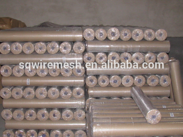 hot sell 1/4'' galvanized welded wire mesh(factory price)
