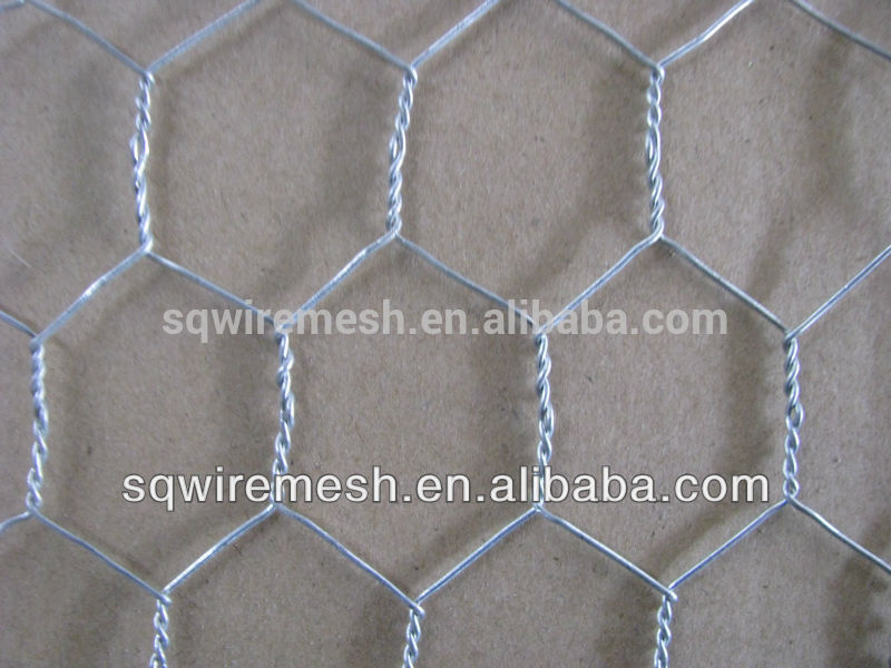 Factory Anping galvanized chicken wire mesh(21 history)