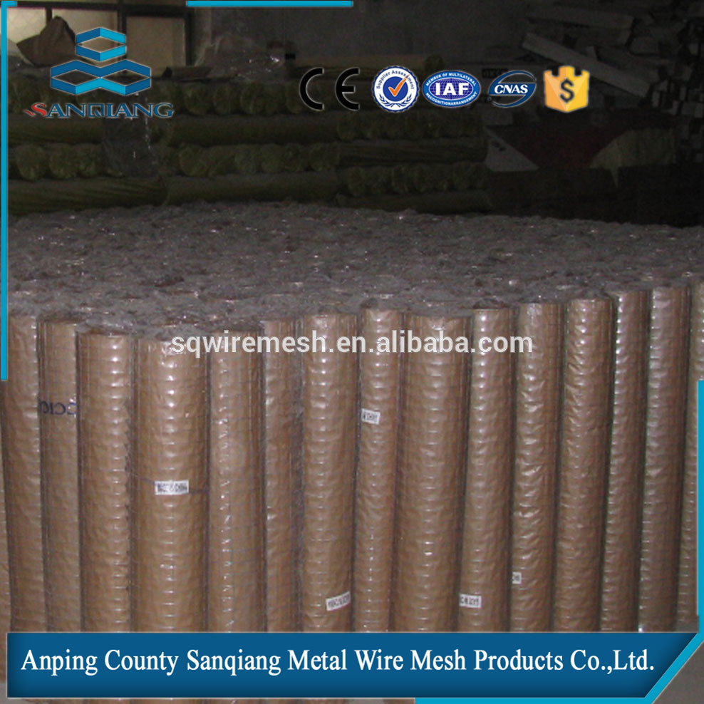 galvanized welded wire mesh roll high quality